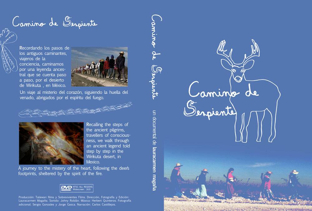 Arte del DVD